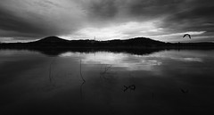whispers of the lake (Keith Midson) Tags: canberra australia lake bird lakeburleygriffin reflection capital morning early sky cloud still calm tranquil sigma art 24mm f14