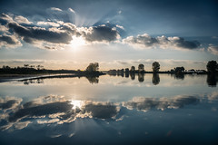I see reflections of you and me (Ingeborg Ruyken) Tags: 2016 500pxs empel herfst maas maasuiterwaarden afternoon autumn clouds dropbox fall flickr floodplain middag natuurfotografie october oktober reflections river riverforeland rivier sun sunset wolken zon zonsondergang