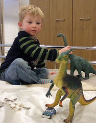 Playing with Dinosaurs (wheehamx) Tags: corey gradchild