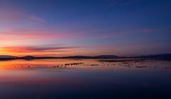 Wetlands-Vallejo CA (Juan Pablo J.) Tags: sonya68 tonikasd1116f28dx sunset sundown sky landscapes longexposurephotography wildlifephotographer nature naturephotography