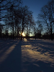 277/365 Blurred morning (zinushana) Tags: blurred morning project365 projectlife project sun sunshine snow light trees shadow 365