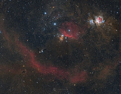 Orion (Claus Steindl) Tags: canon ef200mm f28l ii usm eos 6d astromodified bresser mon2 lacerta mgen orion m78 ic434 m42 m43 running man boogie flame horsehead barnards loop astrophotography night sky stars milky way astrometrydotnet:id=nova1846553 astrometrydotnet:status=solved