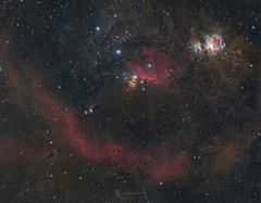 Orion (Claus Steindl) Tags: canon ef200mm f28l ii usm eos 6d astromodified bresser mon2 lacerta mgen orion m78 ic434 m42 m43 running man boogie flame horsehead barnards loop astrophotography night sky stars milky way astrometrydotnet:id=nova1846553 astrometrydotnet:status=solved