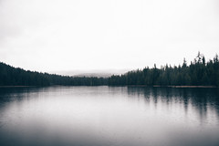#803 (-HannahKemp) Tags: trillium lake trilliumlake forest oregon pnw pacificnorthwest trees landscape nature
