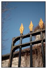 Acr... (DavidB1977) Tags: france iledefrance valdoise goussainville nikon d610 nikkor grille pointe 2885mm