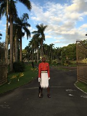 Guards watching over the Presidents Palace, Fiji!