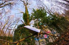 2016.12.03 PHOTO ECOLE JADE-6959-2