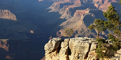 Deep Shadows (david.horst.7) Tags: park arizona grand canyon national