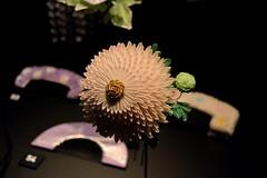 GEISHA Exhibition (Roselinde Alexandra) Tags: museum hair leiden exhibition maiko geiko geisha accessories hairstyle rijksmuseum accessory kanzashi volkenkunde