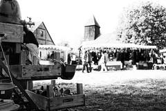 2014-10-04-Klempenow-20141004-135041-i194-p0081-_Bearbeitet1309-ILCE-6000-24_mm-.jpg