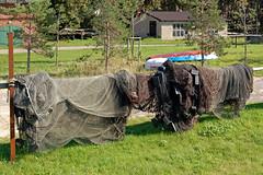 Thiessow - Ortsansichten (02) - Fischernetze (Pixelteufel) Tags: urlaub insel rgen ostsee ferien freizeit tourismus fischer mecklenburgvorpommern erholung ruhe fischen thiessow fischerei ostseeraum fischindustrie