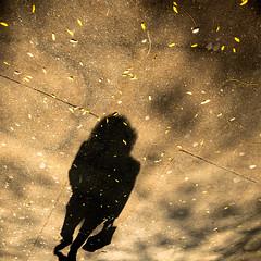 shadow woman / la femme de l'ombre (mouzhik) Tags: shadow paris canon ombra streetphotography sombra ombre schatten parijs pars cie zemzem mysteriouswoman  photoderue muzhik pary  mujik parys    pariisi   photographiederue  parizo moujik shadowwoman fotografiadistrada fotoderua strasenfotografie  mouzhik      schattenfrau pars  y  prizs lafemmedelombre lamujerdelasombra