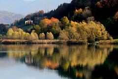 Autumn on the Lake Endine (annalisabianchetti) Tags: autumn reflections autunno riflessi lagodendine lakeendine