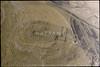 Meidan (APAAME) Tags: archaeology ancienthistory middleeast airphoto oblique aerialphotography aerialphotograph scannedfromnegative meidan aerialarchaeology jadis2006011 megaj9268
