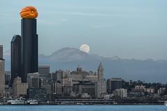 Pumpkin Rising (Tachyonfound) Tags: