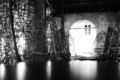 2014-10-02-Stralsund-20141002-202005-i193-p0229-_Bearbeitet1293-ILCE-6000-24_mm-.jpg