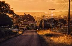 rural evening (paddy_bb) Tags: street travel newzealand sky evening 1984 northisland neuseeland waiuku paddybb
