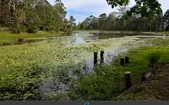 111D Woolgoolga Creek Road, Woolgoolga NSW