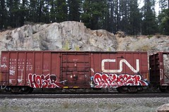 HOSER, BAYSER (YardJock) Tags: railroad metal train graffiti steel boxcar benching benchreport