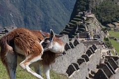 While you're down there, Machu Picchu