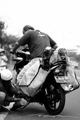 23 (Garry Andrew Lotulung) Tags: street portrait bw monochrome canon children indonesia cow blackwhite child muslim islam religion goat oldman human kambing adha humaninterest sapi tangerang idul eidmubarak iduladha canon7d