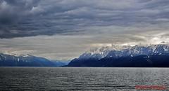 Lac Lman - SWITZERLAND (01DGN) Tags: landscape schweiz switzerland lausanne manzara laclman lozan