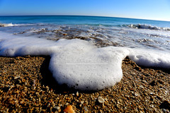 Rush (Lost Odyssey) Tags: ocean shells beach water sunrise rocks surf waves florida barrel paddle wave surfing atlantic surfboard tropical surfers reef skimboard