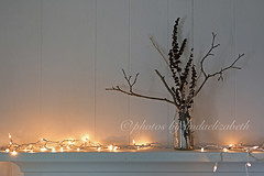simplicity (lindaelizabeth) Tags: horizontal canon lights bottle moody zoom ambientlight branches shelf indoors copyspace minilights