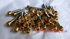 Gold Plated Allen Bolts (PureGoldPlating) Tags: goldplated customcar custombike goldplating customscooter