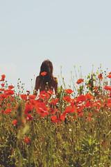 I want my summer back (Catalin_Pop) Tags: flowers red summer portrait sky woman hot green nature girl field june canon hair air natura topless poppies portret fata pipacs vara maci 50d cald femeie catalinpopro