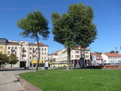 (helena.e) Tags: helenae litauen klaipda trd tree bus buss street gata centrum