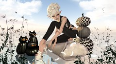 Black Cats & Papercuts (Alisa Perne - sweetandsinfulstyles.blogspot.co.uk) Tags: bw art fashion reflections pose photography blog shoes truth tag avatar pumpkins sl secondlife virtual bjd windlight mixmatch cocodoll purepoison delmay azoury zibska {anc} alisa26 alisaperne