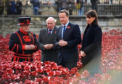 PM at Tower of London poppy display (The Prime Minister's Office) Tags: london tower sam cameron poppy remembrance pm beefeater arronhoare