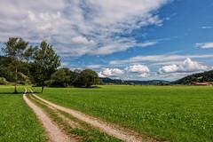 Grosser Alpsee 14 (Wolfgang Staudt) Tags: grosseralpsee allgaeu bayern immenstadt gebirge berge see bergsee ausflugsziel deutschland