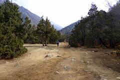 Weg hinunter zum Fluss (Alfesto) Tags: nepal trekking wanderung himalaya namche khumbuarea sagarmathanationalpark tengboche phortse phorche