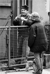 small like this... (lubokl47) Tags: street man woman dog pet fence czech debate neighbours afternoon today bw