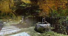 Autumn (ARnnO PLAneR) Tags: kyoto zen garden acer erable autumn automne japan virtualnature