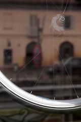 Idiosyncrasy (Marcus Circus) Tags: marcus circus bicicletta divieto idiosincrasia cerchio