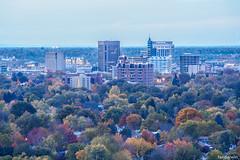 Boise Skyline Fall 2016 (fandarwin) Tags: boise skyline fall 2016 foliage darwin fan fandarwin olympus omd em10