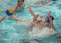2A150690 (roel.ubels) Tags: uzsc zpb hl productions waterpolo eredivisie utrecht krommerijn 2016 sport topsport