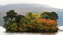 An Island of colours on Loch Lomond (JEBarrera) Tags: soe lochlomond canon7dmkii 100mm autumn canon