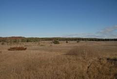 DSG_7389 Panorama 2 of 6 at Photo Post #2 (Greying_Geezer) Tags: 2016 hazelbird ncc natureconservancyofcanada hamiltontownship ort hiking naturereserves hazelbirdnr2