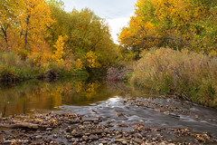 Fly Fishermans Paradise (Striking Photography by Bo Insogna) Tags: fishing streams rivers water creeks mountains colorado bouldercounty stvrain mature landscapes jamesinsogna autumn seasons fall foliage colorful paradise