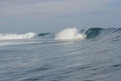 thumb_DSC_1418_1024 (minajasmin.lolland) Tags: surfphotography teahoupoo tahiti frenchpolynesia
