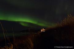The dark path (Tmas Freyr) Tags: aurora auroraborealis iceland kirkjufell norurljs northernlights grundarfjrur grundarfjordur grundarfjardarbaer grundarfjararbr snfellsnes snaefellsnes