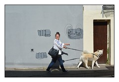 Just Walking The Dog ... (junepurkiss) Tags: dog dogwalker walkingthedog streetart brighton sussex