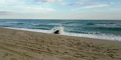 Autumn Sea ~ (Maria Cristina Talarico) Tags: mariacristinatalarico sea calabria coldwater autumn blue sly water waves