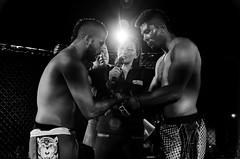 LFC 10 TRIVIÑO VS BULA_DSC7641 (JuanSGreen) Tags: mma bjj jiu jitsu bogotá colombia lfc fighting fighters boxeo boxing blackwhite bw blancoynegro champion grapling