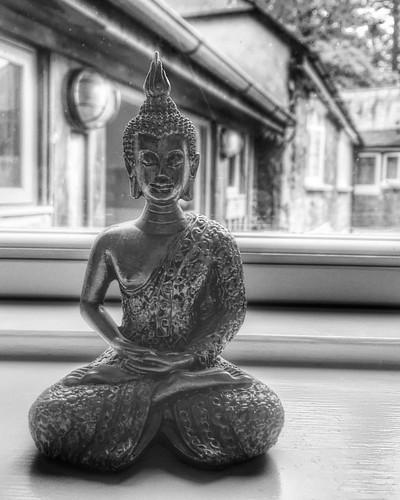 #Buddha #blackandwhite #karunainstitute