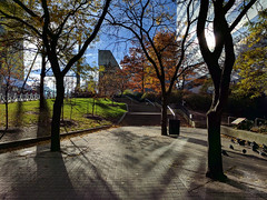 urban oasis (Ian Muttoo) Tags: img20161110092329edit toronto ontario canada gimp public park isabellavalancycrawfordpark shadow sunrise morning skydome rogerscentre fall autumn shadows